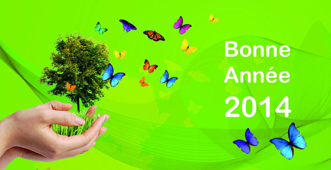Bonne Année 2014 Voeux%202014_bandeau%202